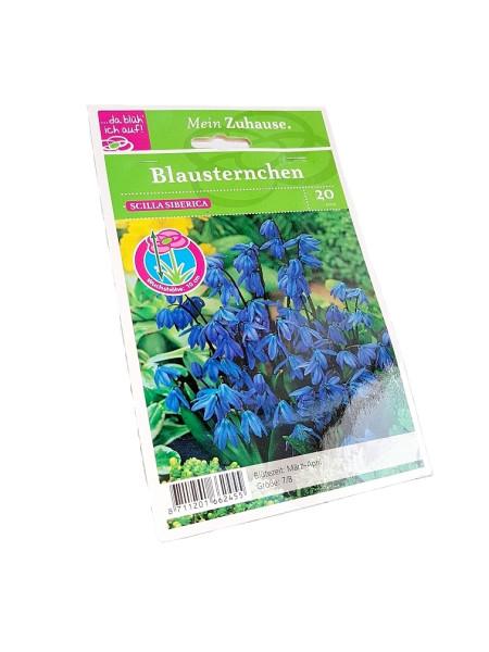 da blüh' ich auf Blausternchen blau - 20 Blumenzwiebeln (7/8cm)