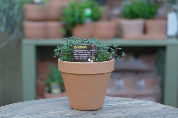LA'BIO! Thymian - Thymus vulgaris (13cm Topf)