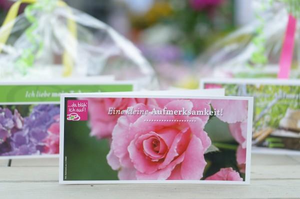 Geschenkgutschein 15€ für die Landgärtnerei Beier - Motiv: Rosa Rose